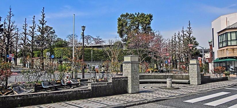 住めなくても歴史や特徴は常識として知っておきたい。日本の高級住宅街4選